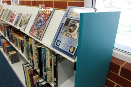 Library shelving 11